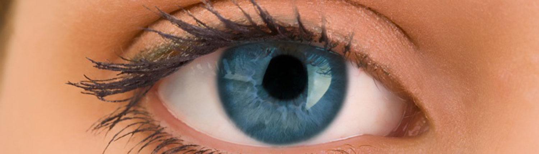 Westport Eyecare: Comprehensive Eye Health & Vision Care